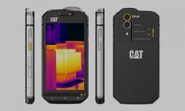 CAT BlackBerry